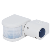 PIR Sensor for Lighting Control